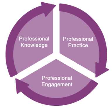 understand principles of professional development Unit 502 promote professional development outcome 1 - understand principles of professional development 11 - explain the importance of continually.